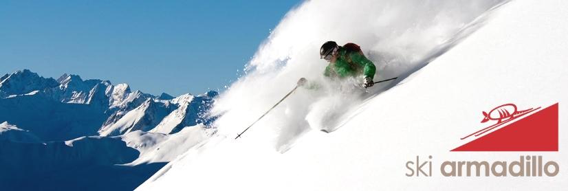 ski armadillo case study
