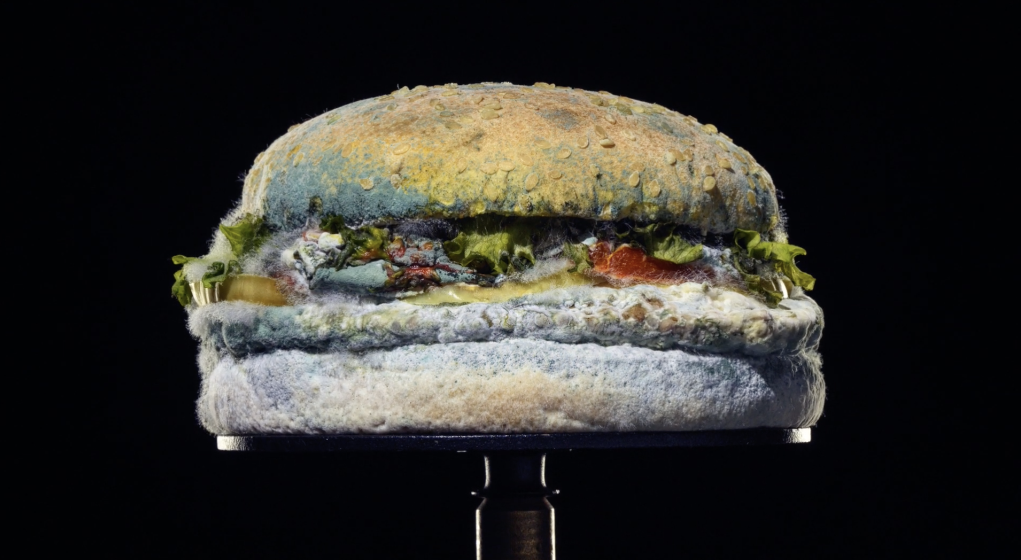 Mouldy burger from Burger King advert